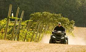 Driving a four wheeler ATV through the vineyard, Emerson Vineyard